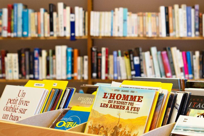 Saint-Carreuc-emmanuelle-rodrigue-08428